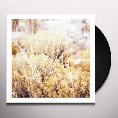 Mamiffer BRILLIANT TABERNACLE Vinyl Record