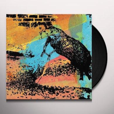 DARK COUNTRY MAGIC Vinyl Record