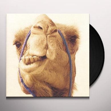 MAX GAZZE Vinyl Record