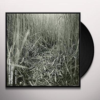 PERMANENT WAY Vinyl Record