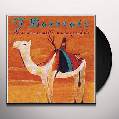 Franco Battiato COME UN CAMMELLO IN UNA GRONDAIA Vinyl Record