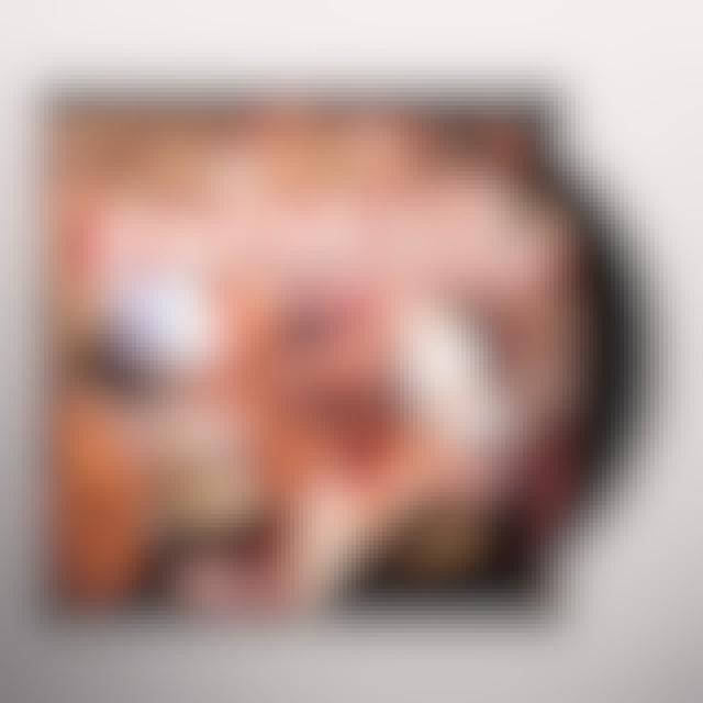 Lady Gaga PAPARAZZI - THE REMIXES (X7) Vinyl Record