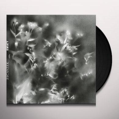 KWIATY Vinyl Record