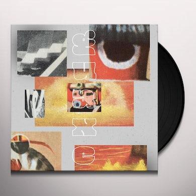 GUAXE Vinyl Record