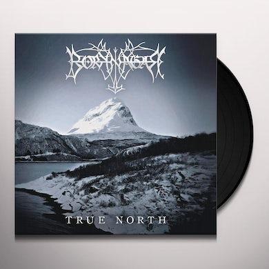 Borknagar True north  ie  metallic silver  2lp Vinyl Record