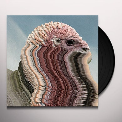 Holy Fuck BIRD BRAINS Vinyl Record