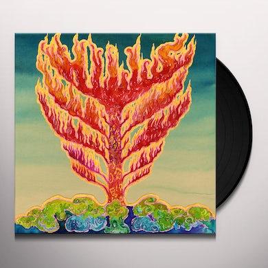 Hills FRID Vinyl Record