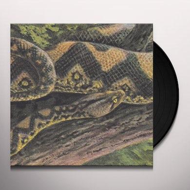 Rainforest Spiritual Enslavement AMBIENT BLACK MAGIC Vinyl Record