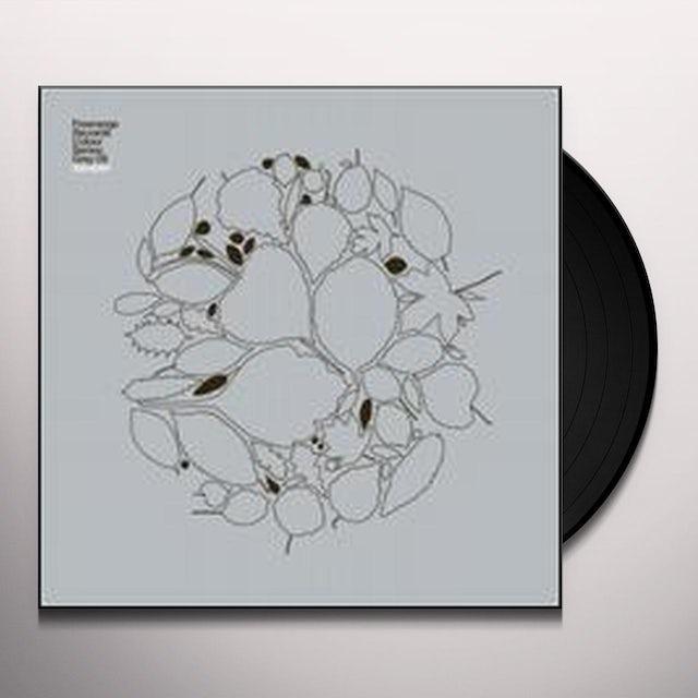 Colour Series: Grey 09 / Various Vinyl Record