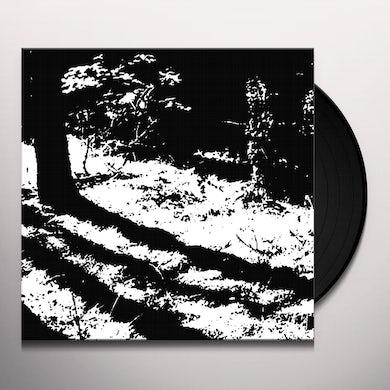 Reggy Van Oers TRANSCRANIAL Vinyl Record