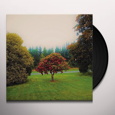 Foothills Vinyl Record