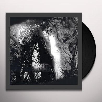 PISETZKY TEARS OF A ROUGH MACHINE Vinyl Record