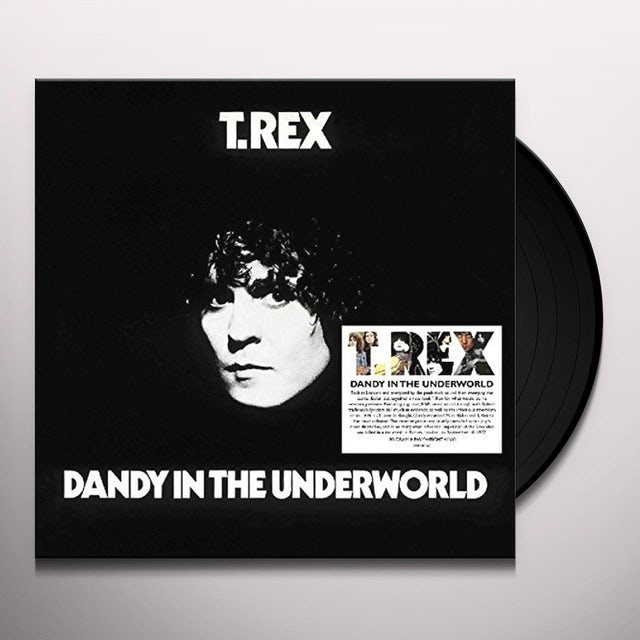T-Rex DANDY IN THE UNDERWORLD Vinyl Record