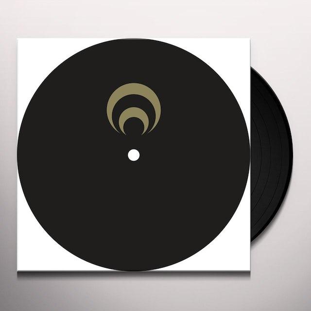 Mike Dehnert CHECK Vinyl Record